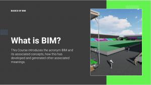 What is BIM